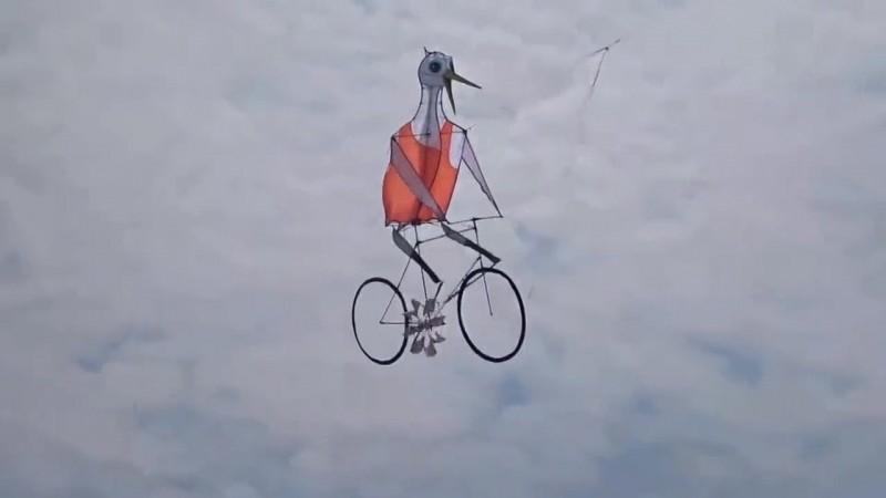 Diều đạp xe