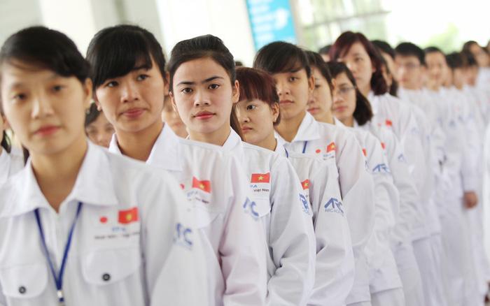 Người lao động VN đi làm việc ở nước ngoài theo hợp đồng sẽ được bảo đảm bình đẳng giới - Ảnh 1.