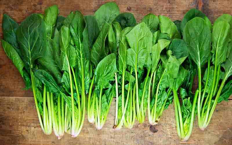 Những thực phẩm tốt cho làn da vào mùa hanh khô - Ảnh 6.