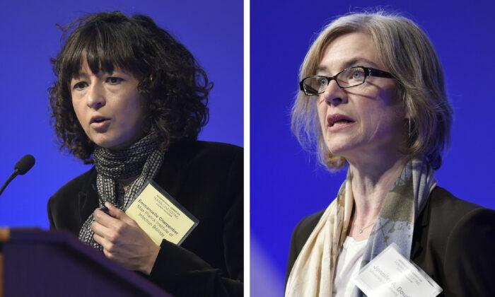 10 thời khắc quan trọng đối với phụ nữ trong năm 2020 - Ảnh 10.