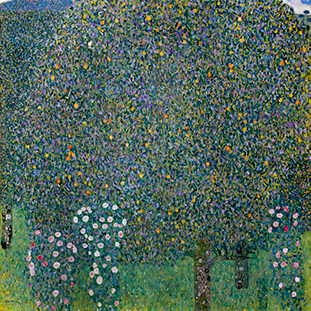 Tác phẩm Hoa hồng dưới tán cây của Gustav Klimt