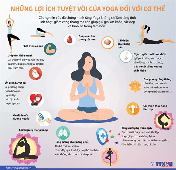 Gần 3.000 người tham gia Ngày Quốc tế Yoga lần thứ 6 tại Hạ Long - Ảnh 2.