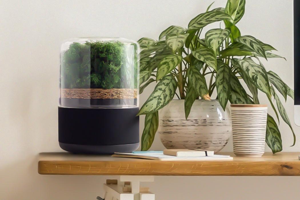 """Chỉ bằng ấm nước, máy lọc không khí sạch tương đương 3.000 cây xanh còn điều khiển bằng giọng nói cực """"sịn xò""""  - Ảnh 2."""