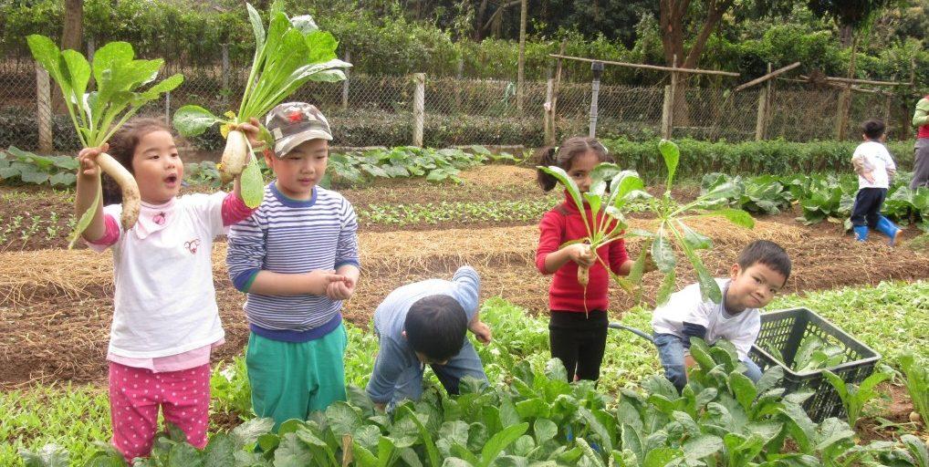 """Review 4 trường mầm non xịn xò tại Hà Nội áp dụng phương pháp Montessori, dành cho bố mẹ đang chuẩn bị cho con """"đi bộ đội""""  - Ảnh 13."""
