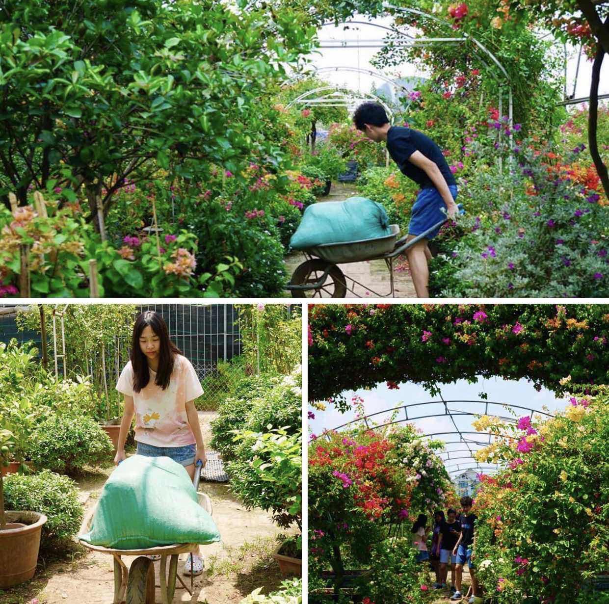 Dự án tái chế lõi ngô của học sinh Việt giành ngôi Vô địch cuộc thi Khởi nghiệp trẻ quốc tế - Ảnh 4.