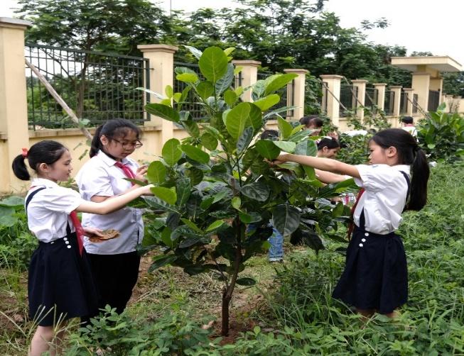 Hoạt động trồng cây xanh sẽ giúp hình thành ý thức yêu quý thiên nhiên và bảo vệ môi trường, đặc biệt là với trẻ em, thế hệ tương lai của đất nước