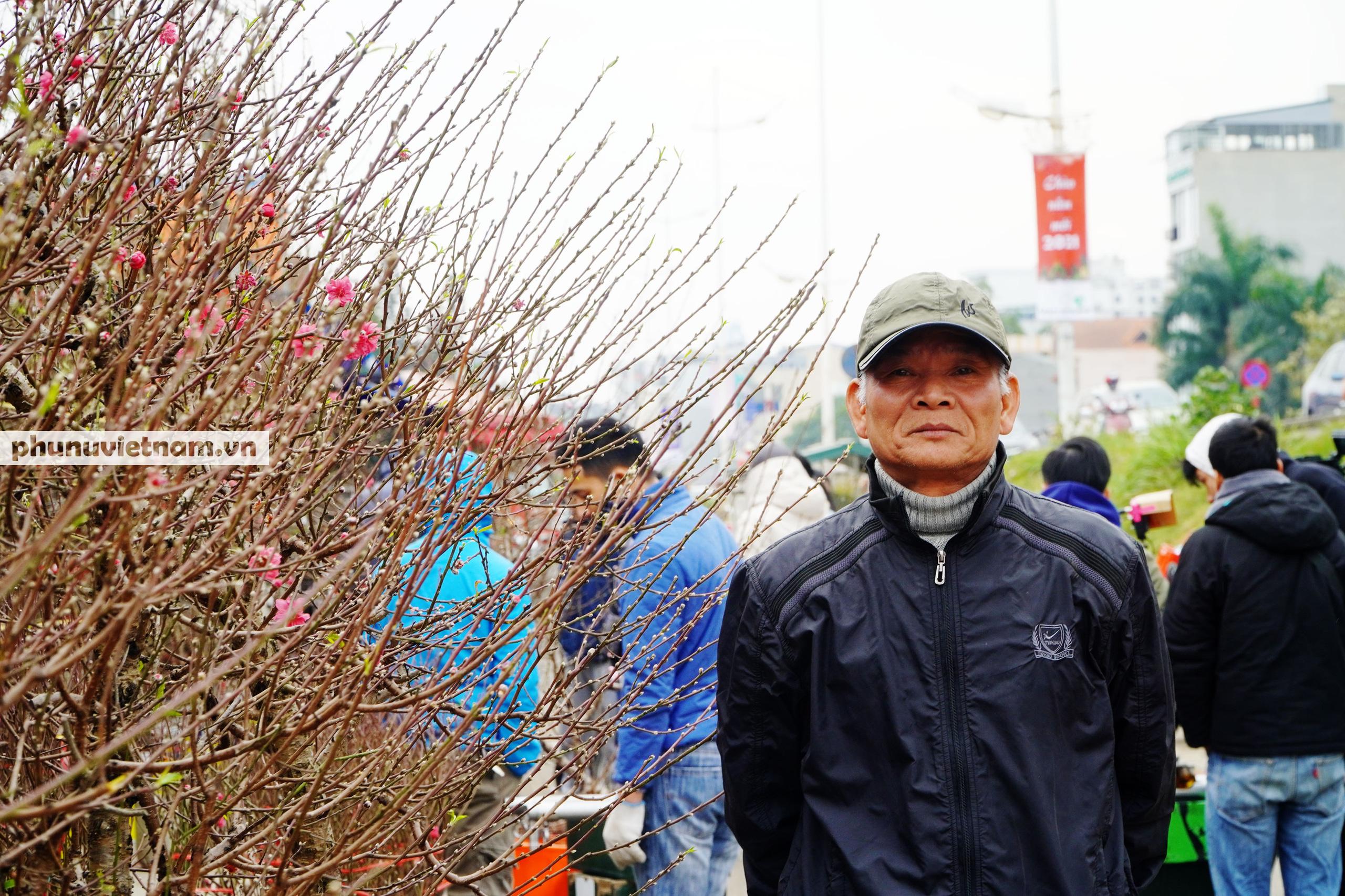 Đào Nhật Tân nở sớm hơn mọi năm, người trồng cầu mong giá rét kéo dài - Ảnh 3.