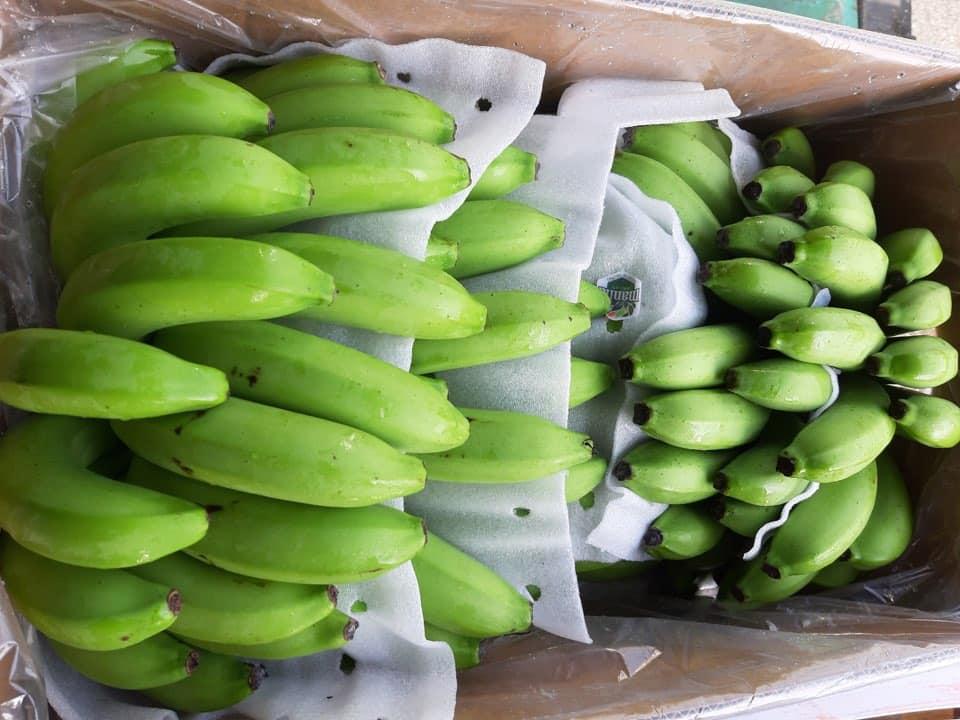 Bỏ tiền 25 triệu mua cả vườn chuối, tiểu thương thắng đậm gấp đôi khi bán 10 ngày Tết - Ảnh 3.