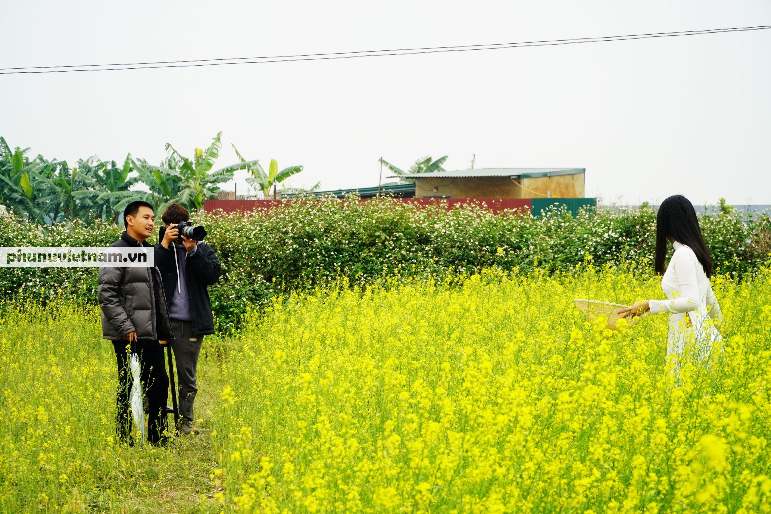 Thiếu nữ áo trắng đẹp hút lòng người trên cánh đồng hoa cải vàng ở Chi Đông - Ảnh 2.