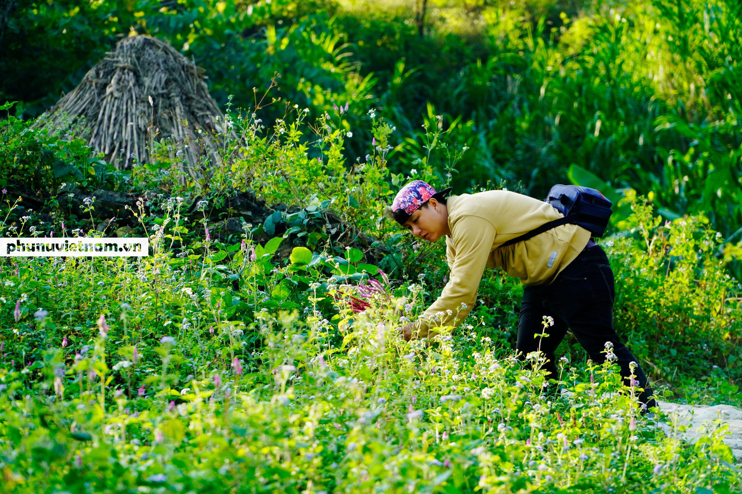 Mùa hoa tam giác mạch đong đầy nỗi nhớ trên Cao nguyên đá Hà Giang - Ảnh 14.