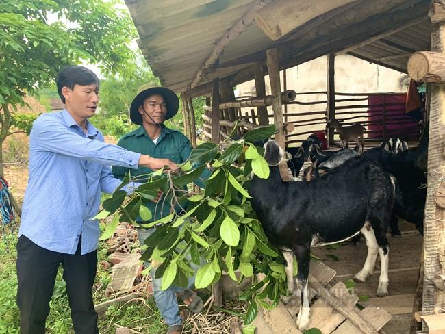 Hành trình 19 năm giúp dân giảm nghèo ở Quảng Bình - Ảnh 1.