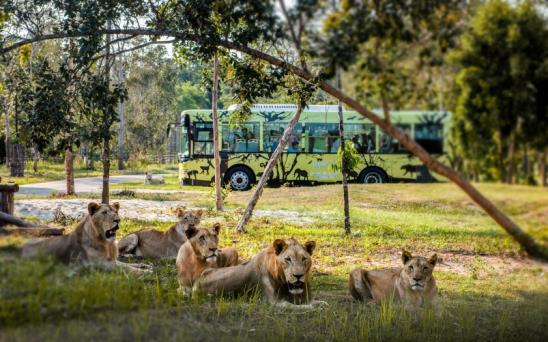 """Một ngày vào vai """"nhà động vật học"""" giữa """"thiên đường hoang dã"""" Vinpearl Safari - Ảnh 5."""