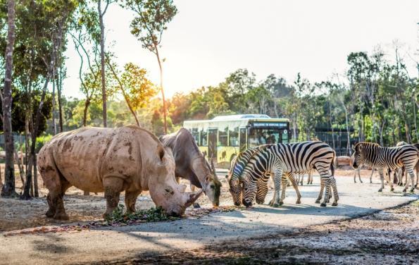 """Một ngày vào vai """"nhà động vật học"""" giữa """"thiên đường hoang dã"""" Vinpearl Safari - Ảnh 6."""