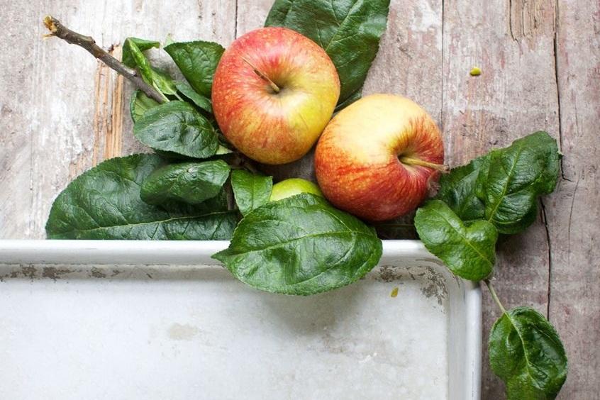 5 loại thực phẩm thần kỳ giúp các chị em có da đẹp, dáng thon và chống lão hóa hiệu quả - Ảnh 3.