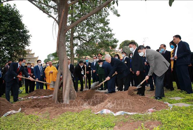 Tổng Bí thư, Chủ tịch nước dâng hương và trồng cây lưu niệm tại Hoàng Thành Thăng Long - Ảnh 1.
