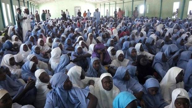 Hơn 300 nữ sinh bị bắt cóc tập thể tại Nigeria - Ảnh 2.