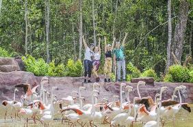 Ngây ngất với triệu điểm check-in sống ảo mới tại Bắc đảo Ngọc - Ảnh 23.