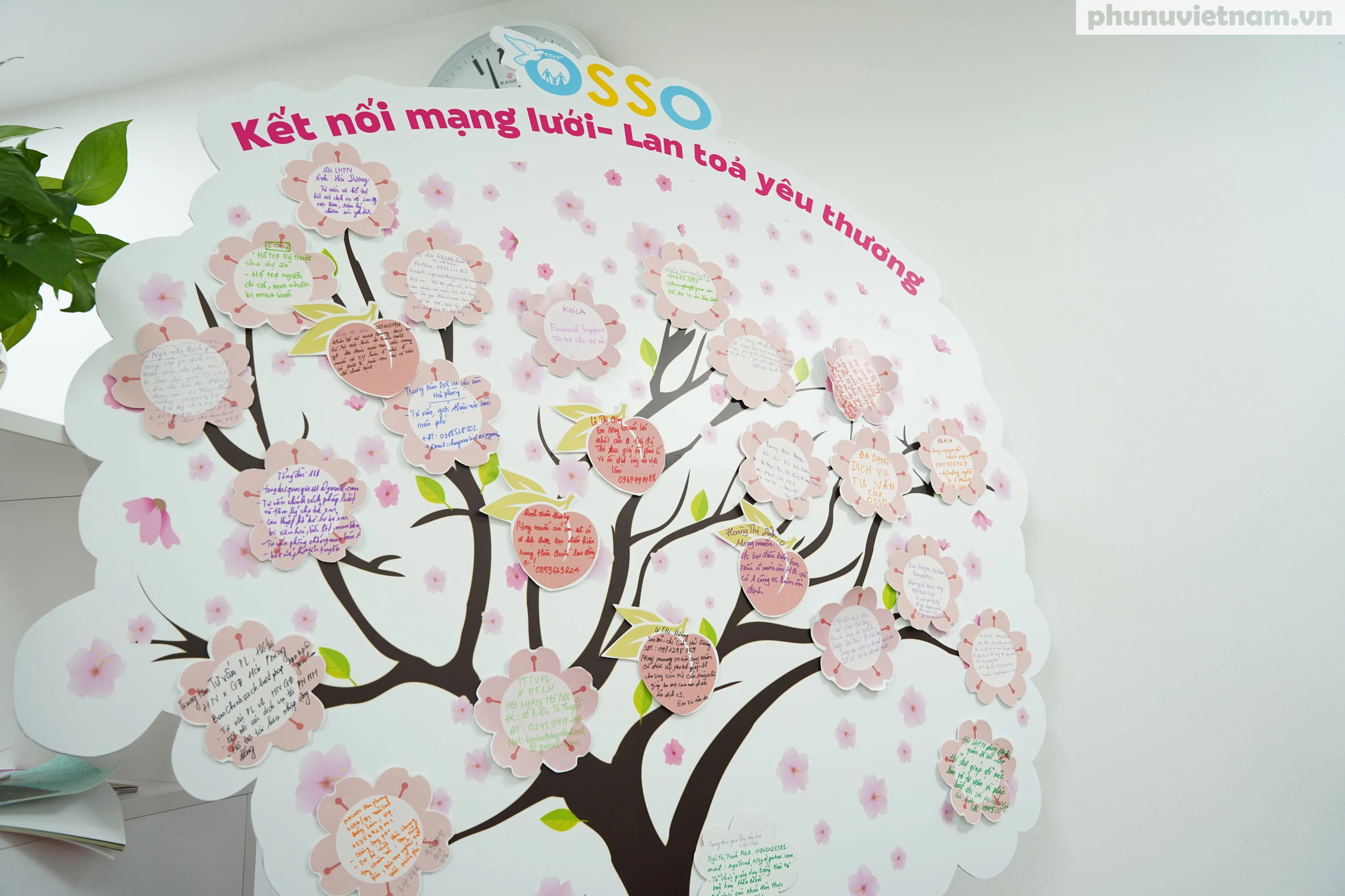 Nữ tư vấn viên Văn phòng OSSO Hà Nội chia sẻ về cách thức hỗ trợ phụ nữ di cư hồi hương - Ảnh 3.