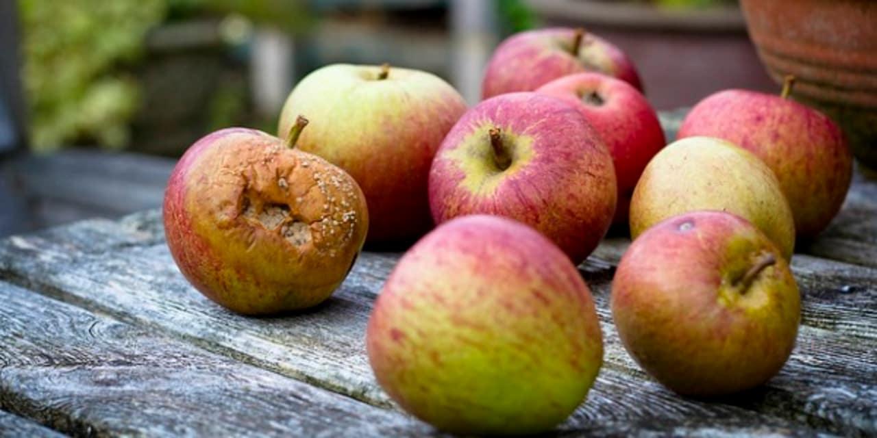 Trái cây vào mùa hè thơm ngon, bổ dưỡng nhưng tiếc của ăn các loại quả này có thể gây ung thư - Ảnh 2.
