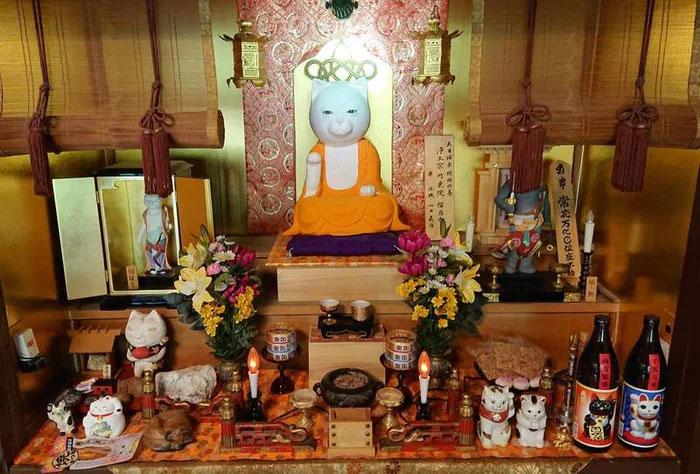 Nyan Nyan Ji, chùa Mèo nổi tiếng có một không hai ở Nhật Bản - Ảnh 2.