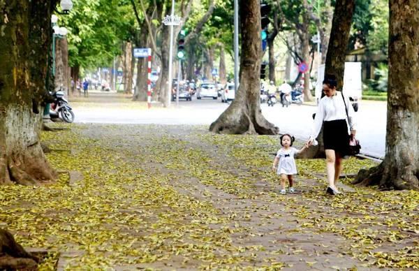 Mùa lá rụng nhớ một thời tuổi thơ trong trẻo - Ảnh 2.