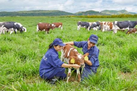 Vinamilk chính thức thông cáo về nguồn nguyên liệu để sản xuất các sản phẩm sữa - Ảnh 2.