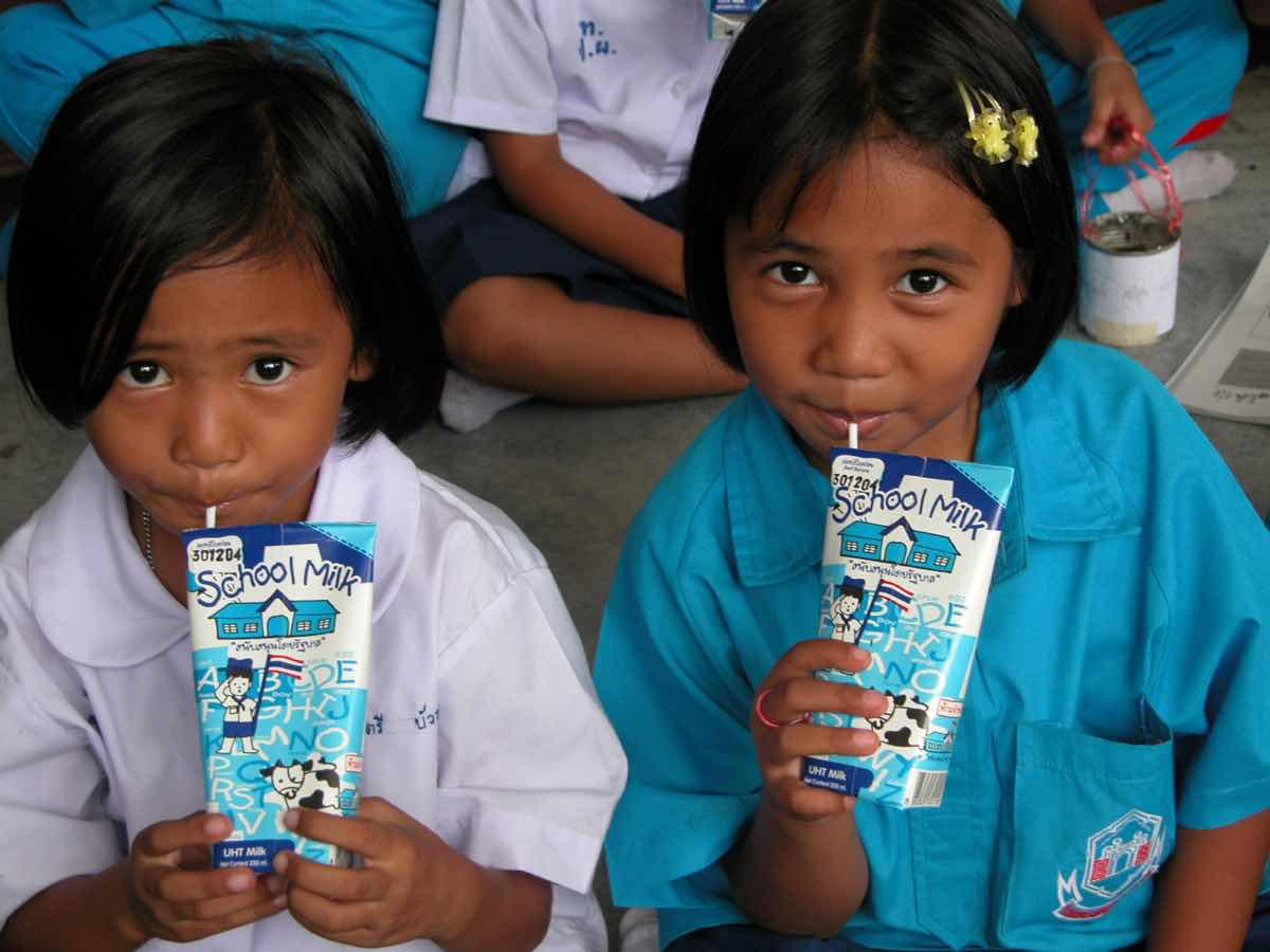 Đã có quy định rõ ràng về sản phẩm dùng cho Chương trình Sữa học đường - Ảnh 3.