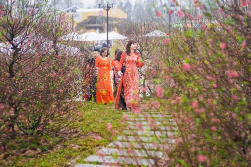 Ngắm những bộ ảnh áo dài đẹp lung linh trong 3 lễ hội hoa lớn nhất Tết Canh Tý - Ảnh 3.