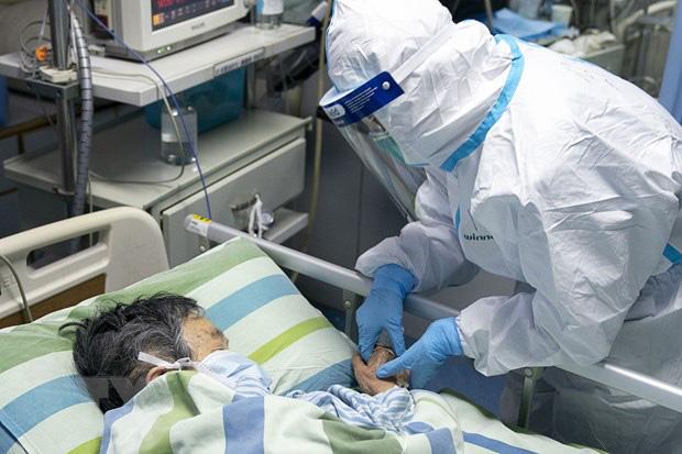 Virus corona: 258 người chết, 11.302 ca nhiễm bệnh - Ảnh 1.