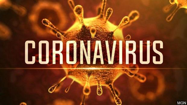 WHO đặt tên chính thức cho virus corona chủng mới là Covid-19 - Ảnh 1.