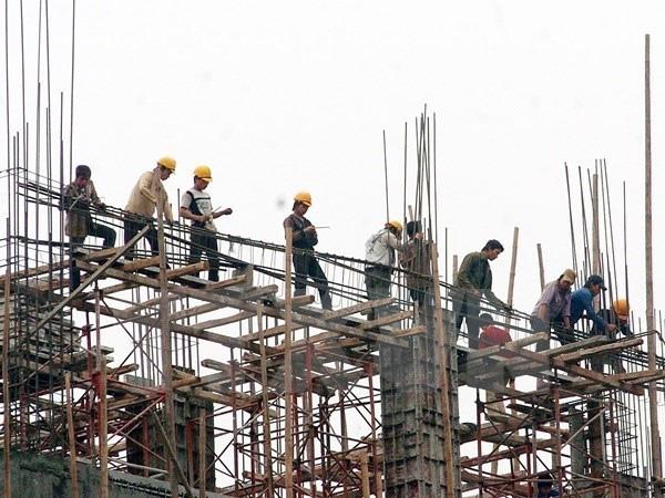 Đề xuất quy định 88 ngành nghề cấm sử dụng lao động dưới 18 tuổi - Ảnh 1.