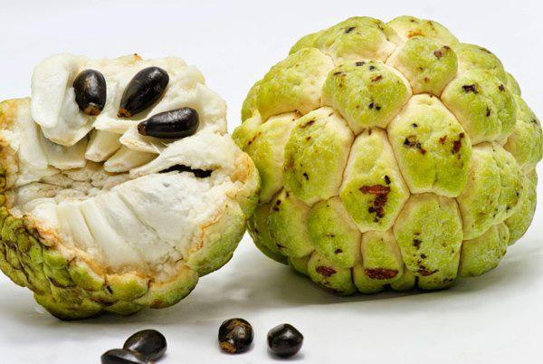 Cẩn trọng với độc tố trong quả na có thể làm hỏng hệ thống thần kinh nếu ăn quá nhiều - Ảnh 2.