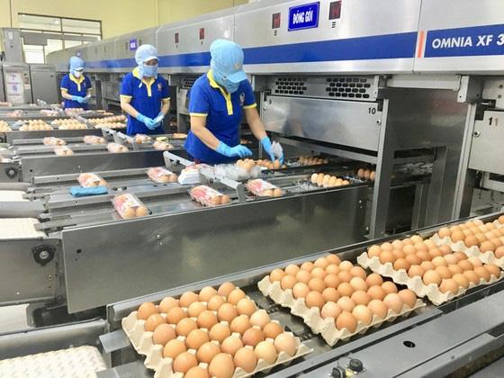 Hơn 1.000 lao động ngành dịch vụ lưu trú, ăn uống bị mất việc do dịch Covid-19 - Ảnh 1.