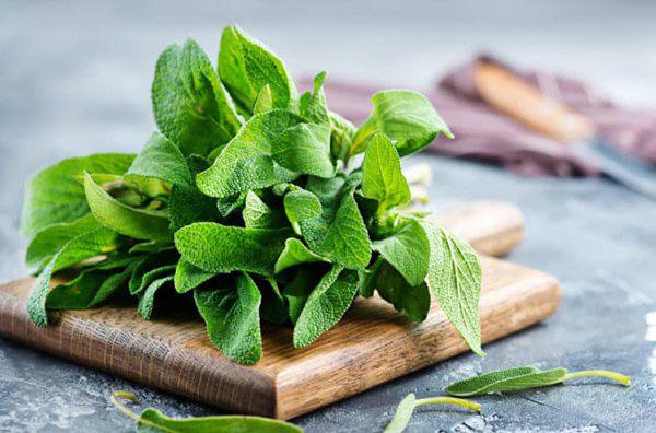 Lưu ngay loạt thực phẩm giúp cơ thể luôn tỏa hương thơm chẳng thua khi dùng nước hoa - Ảnh 4.