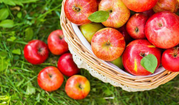 Lưu ngay loạt thực phẩm giúp cơ thể luôn tỏa hương thơm chẳng thua khi dùng nước hoa - Ảnh 8.
