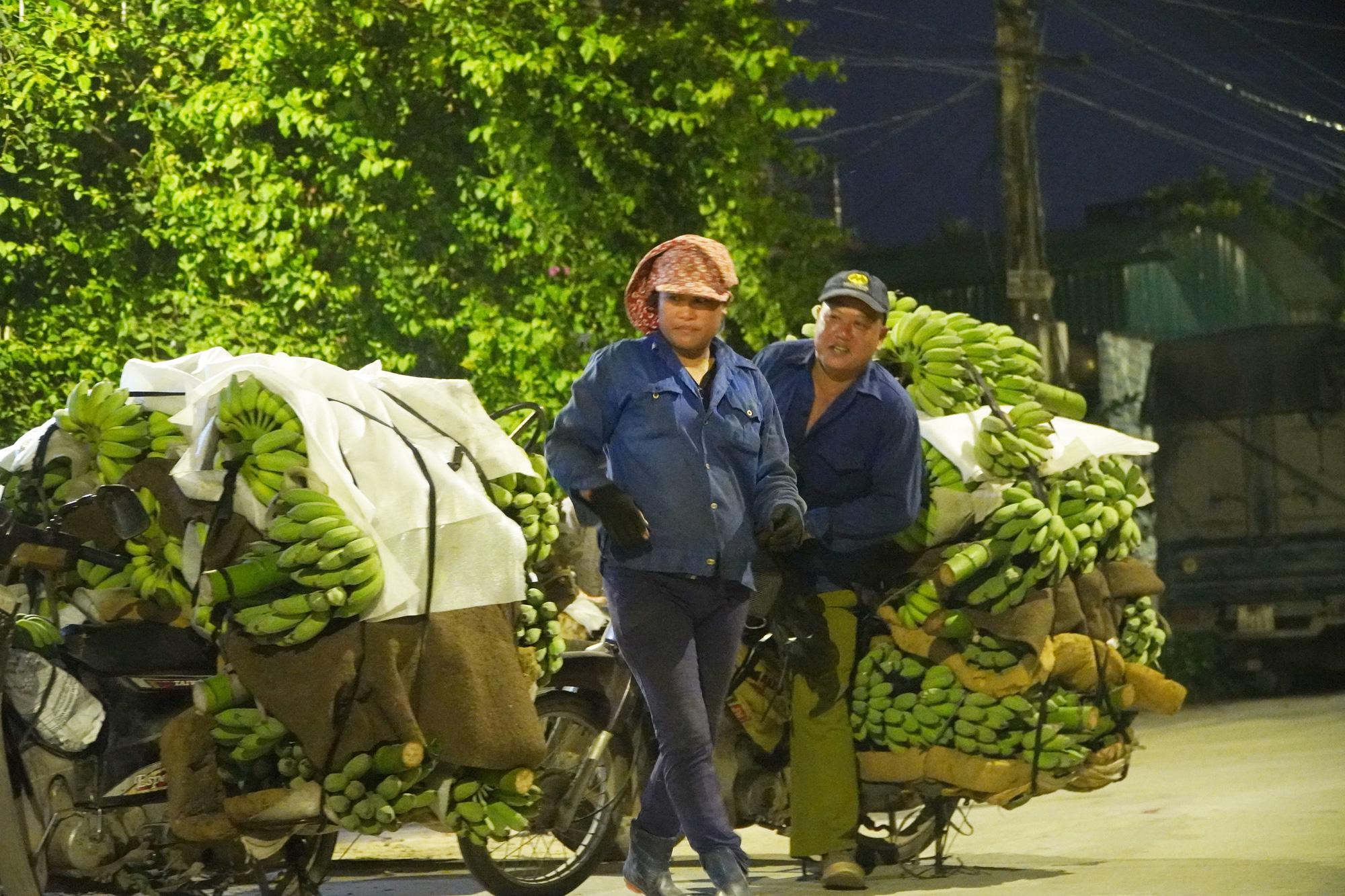 """Hứng chịu """"thảm họa kép"""", người trồng chuối Hưng Yên đau quặn lòng: """"Thương lắm, chuối ơi!"""" - Ảnh 10."""