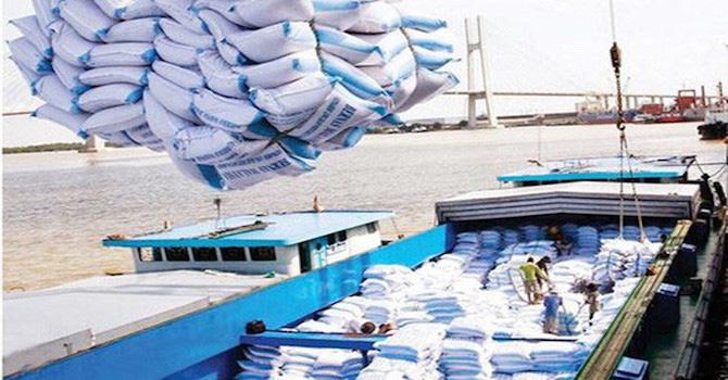 Thủ tướng chỉ đạo tạm dừng ký mới hợp đồng xuất khẩu gạo - Ảnh 1.