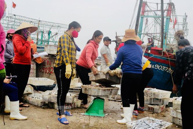 Ngư dân xứ nghệ mang hàng tạ cá biển đến ủng hộ các khu cách ly tập trung  - Ảnh 2.