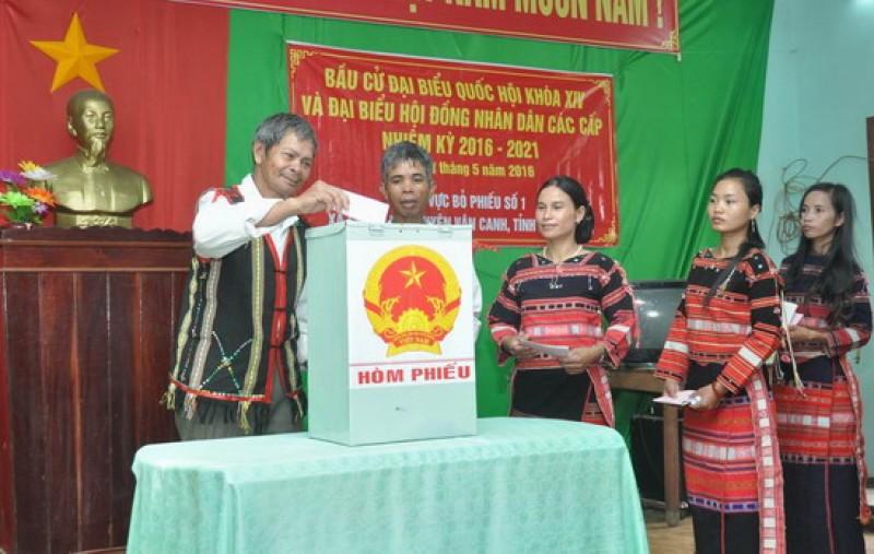 Cả tri tỉnh Bình định tham gia bỏ phiếu