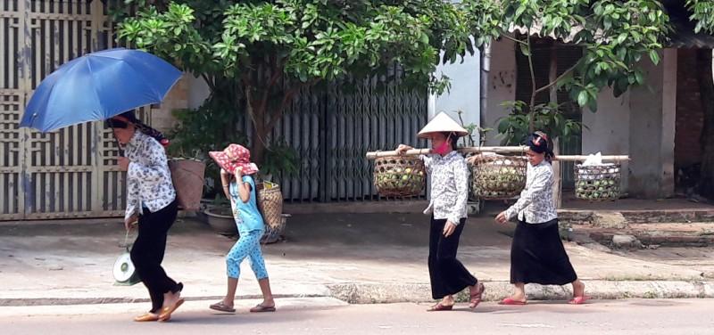 Giống xoài tròn Yên Châu đã gắn bó với bà con người Thái từ nhiều đời nay. Hầu như bà con người Thái nào sống ở đất Yên Châu cũng có vài cây xoài tròn. Bà con cho rằng, đây là món quà mà Giàng đã ban tặng cho đất này.