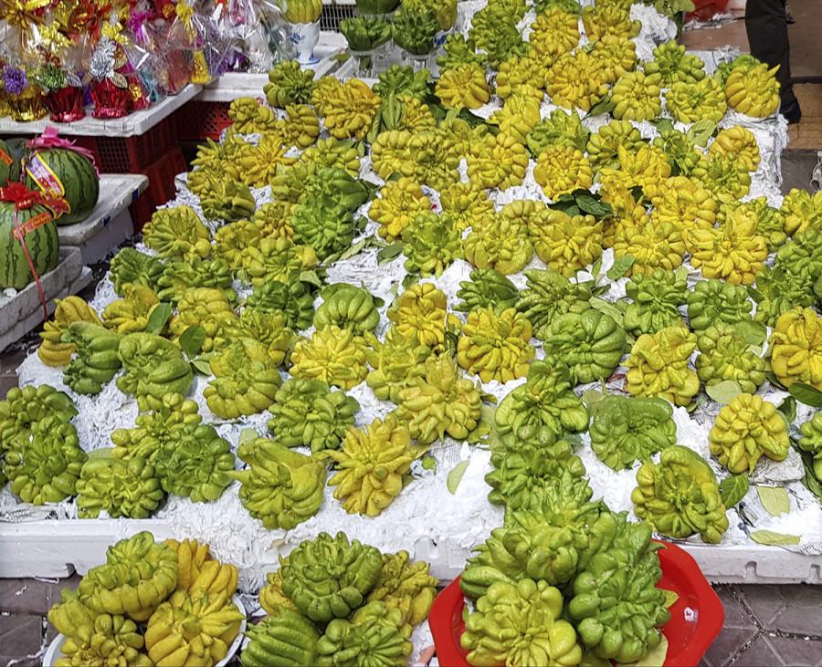 Phật thủ loại quả đẹp có giá 150.000 – 200.000 đồng/quả