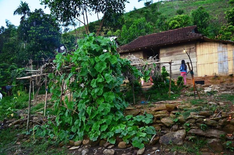 Ngôi nhà của ông Kích bà Yến nằm biệt lập bên một triền đồi ở thôn Cát, cách trung tâm xã Trà Thanh khoảng 5km. Từ đường chính đến nhà phải vượt qua một đoạn đường dốc đá. Ông Kích kể, làng của ông khi xưa ở đây. Sau giải phóng, những người bà con đã chuyển đến ở gần đường lớn, chỉ còn lại gia đình ông ở nơi này.