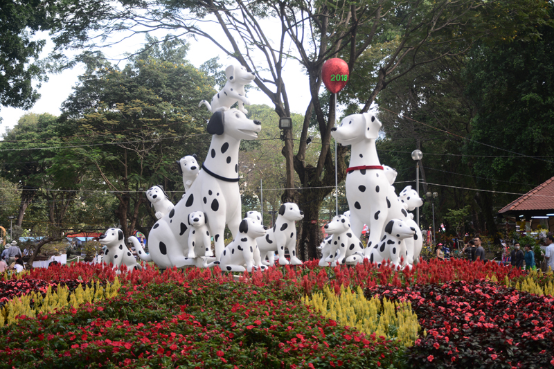 Những chú chó nổi bật trong không gian của hội hoa Xuân 2018.