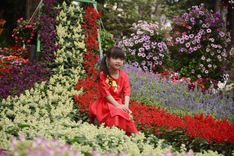 Em bé chụp hình trong không gian rực rỡ của các loại hoa.