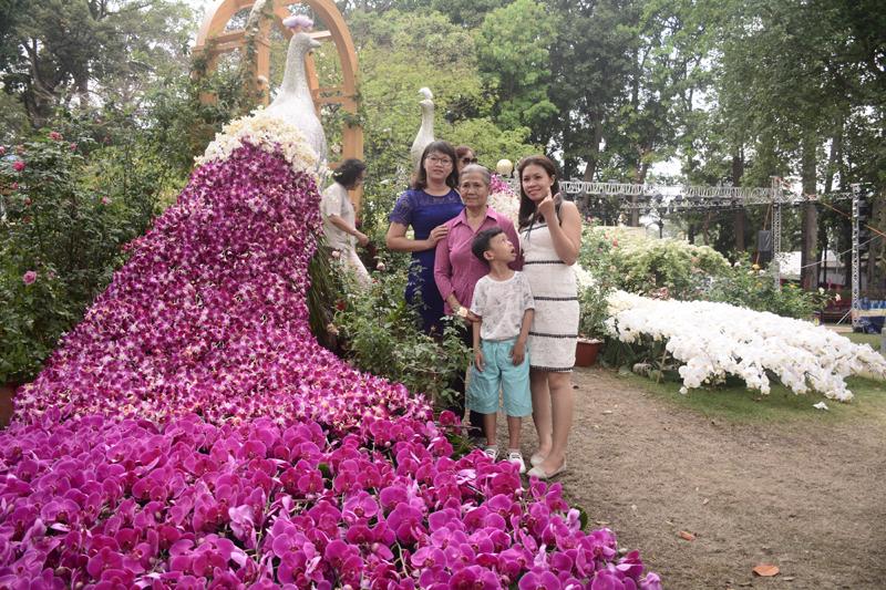 Một chú công được làm từ hoa tươi vô cùng ấn tượng.