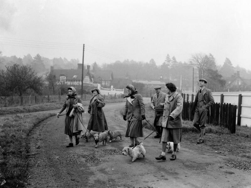 Nữ hoàng (ngoài cùng bên trái) và mẹ của Người (thứ hai từ trái sang) dắt thú cưng đi dạo vào năm 1956.