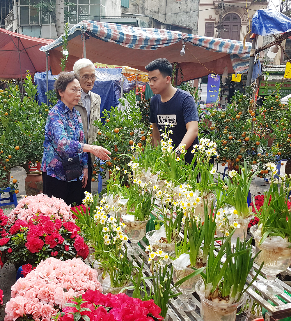 Nhiều người cao tuổi thích chọn chơi hoa thủy tiên hoặc hoa đỗ quyên. Thủy tiên giá 150.000 - 200.000 đồng/bình, trong khi đỗ quyên được bán với giá 300.000 đồng/chậu