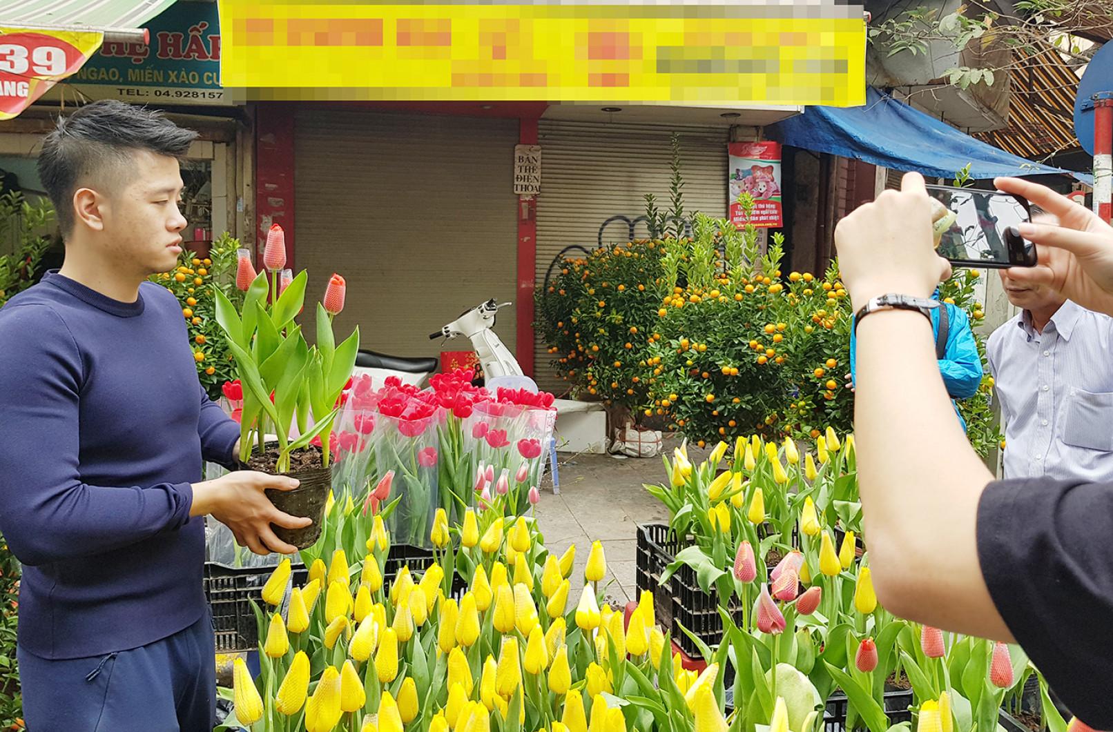 Hoa tulip giá 30.000 đồng/bông được các bạn trẻ ưa chuộng