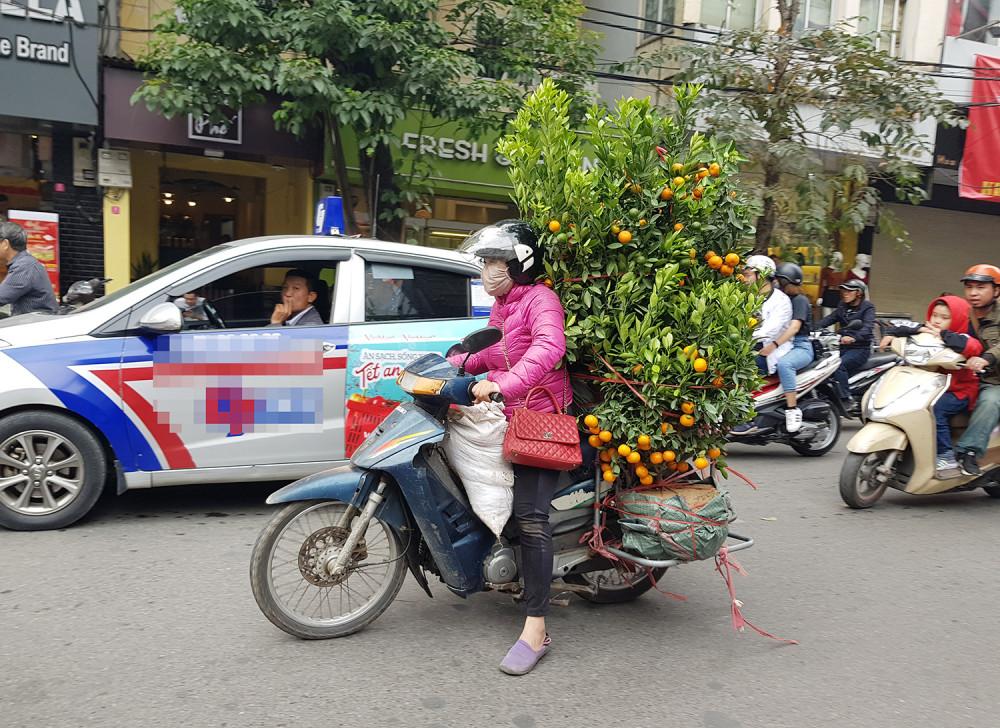 Cuối chiều 29 Tết, những chậu quất vẫn được người bán hối hả chở đến chợ