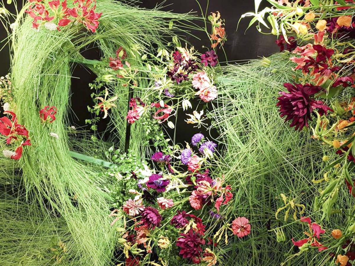 1. Đây là bức tường hoa khổng lồ được kết từ các loại lá, hoa thược dược, hoa Cosmos, hoa Glorisa...